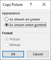 Excel's Copy Picture dialog.