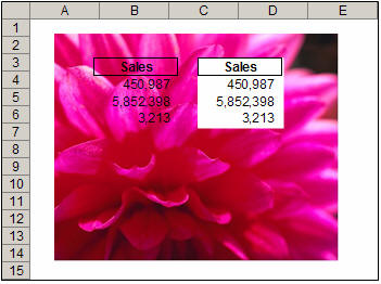 An image in Excel with a linked picture (Camera object) on top of it.