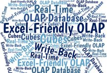 Excel-friendly OLAP databases can give Excel formulas real-time, read-write access to Big Data...while reducing users' workload and errors.